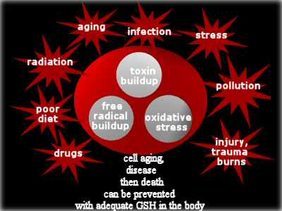 many stresses contribute to poor health